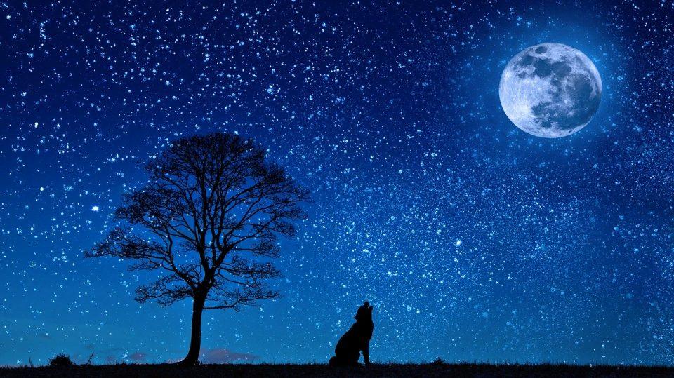 Астрономски календар: Денешниот ден е подолг од ноќта само 6 минути