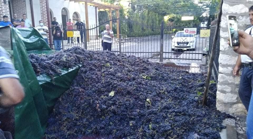 ТИКВЕШКИ ЛОЗАРООВОШТАРИ: Откупувачите да престанат со манипулации во откупот на грозјето