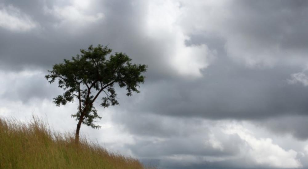 ВРЕМЕТО ДЕНЕСКА: Променливо, попладне со врнежи од дожд кои ноќта ќе биде пообилни